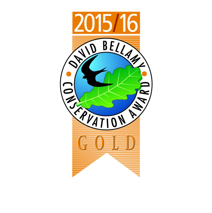 David Bellamy Award (Gold)