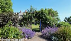 Clovelly Court Gardens