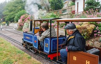 Steam Train Driver Experience Course