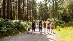 Haldon Forest Park - Forestry Commission