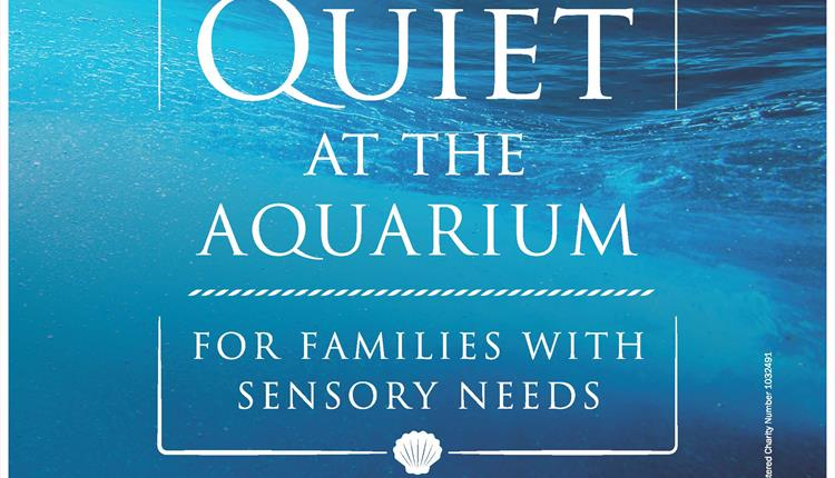 Quiet at the Aquarium