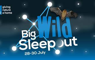 Roundhouse Building and Big Wild Sleep Out - at RSPB Aylesbeare nature reserve