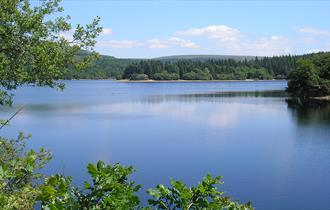 Burrator Reservoir -DD