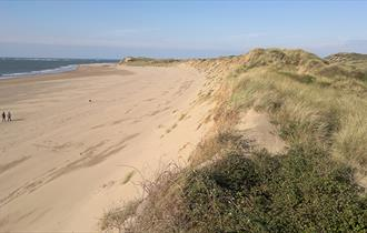 Braunton Burrows