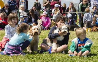 Spring Family Fun Day and Dog Show