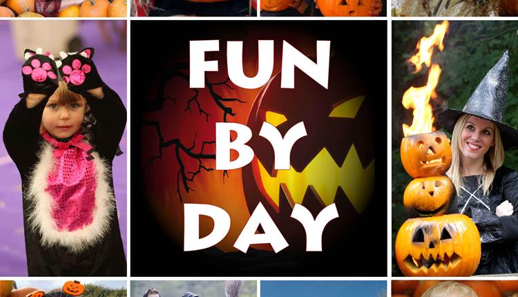 Halloween Festival: Fun by Day