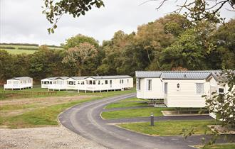 Hedley Wood Caravan and Camping Park View