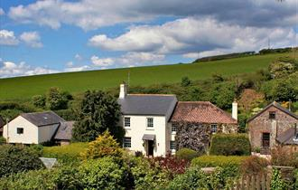 Dittiscombe Holiday Cottages