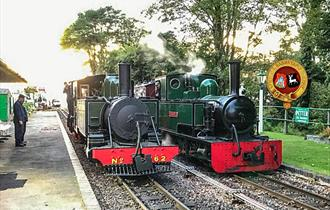Lynton & Barnstaple Railway Father's Day - Dads travel FREE!