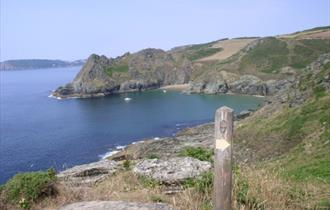 Maceley Cove