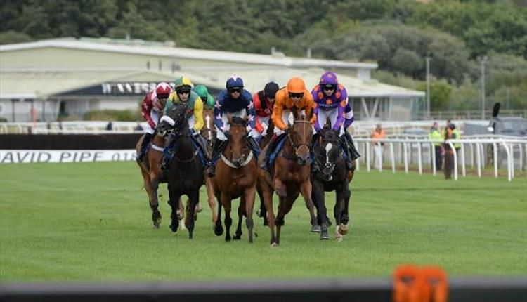 Racing at Newton Abbot Racecourse