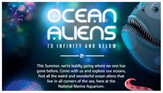 Ocean Aliens Summer Holiday