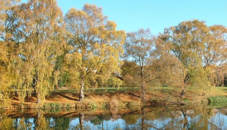 Autumn colours on banks of River Exe at Belle Isle