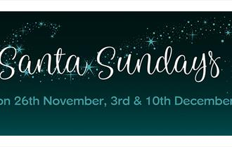 Santa Sundays at Dartington Crystal