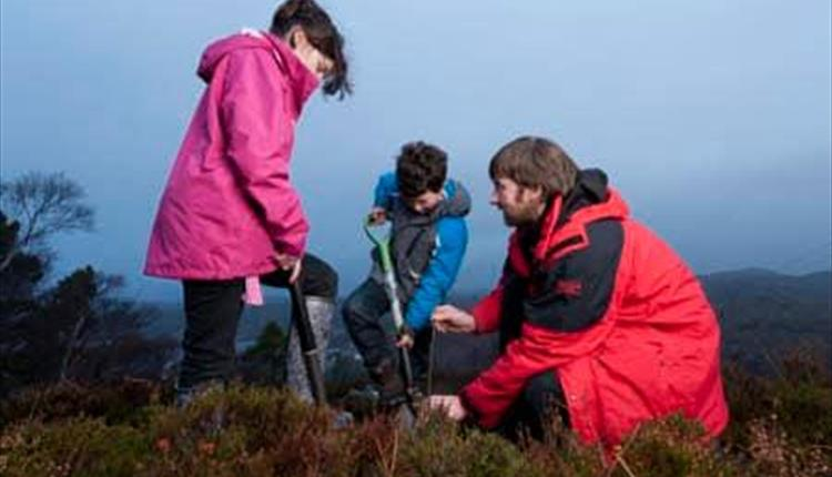 Tree Planting at Woolacombe (National Trust)