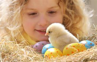 An Egg-ceptional Easter for Devon