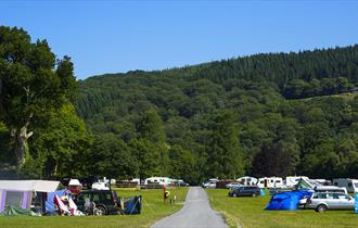 River Dart Country Park camping