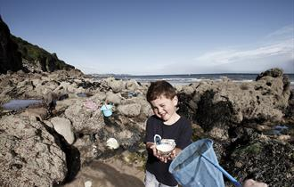 Torbay Coast and Countryside Trust - Rockpool Ramble