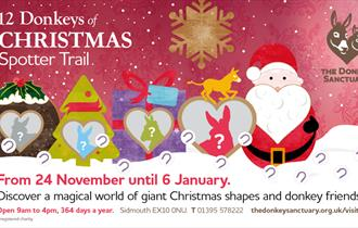 12 Donkeys of Christmas Spotter Trail at The Donkey Sanctuary