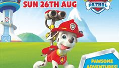 Meet Marshall from Paw Patrol