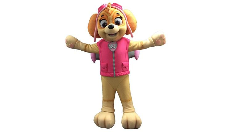 Skye from Paw Patrol